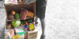 Pirámide alimenticia construida por Santiago como tarea para la escuela.